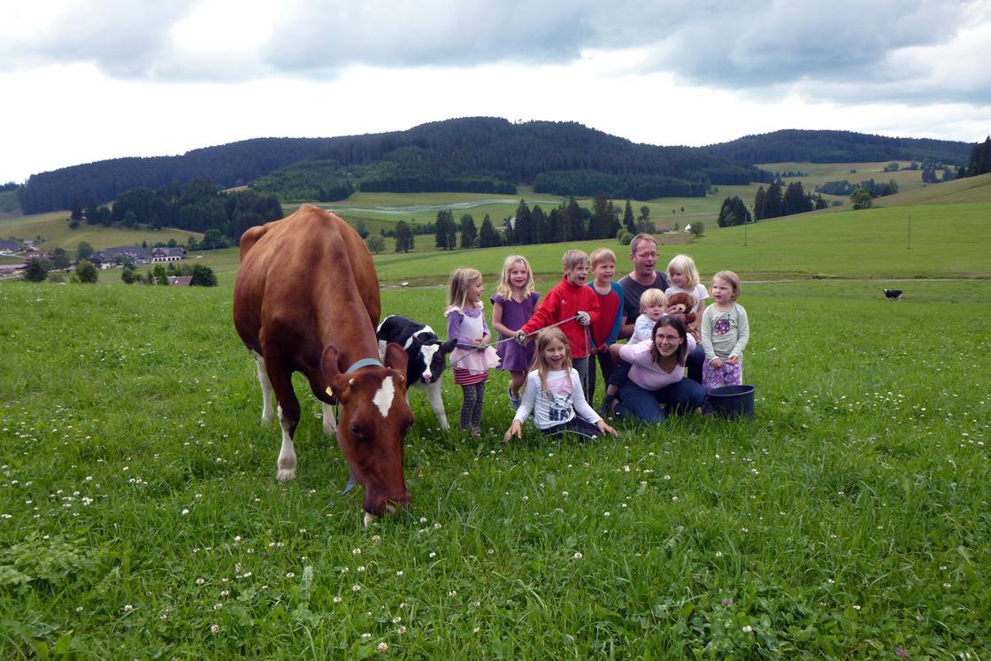 Kinder mit Kühen auf der Weide auf dem Wilmershof